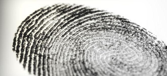 Справка об отсутствии судимости в МФЦ: документы и порядок действий